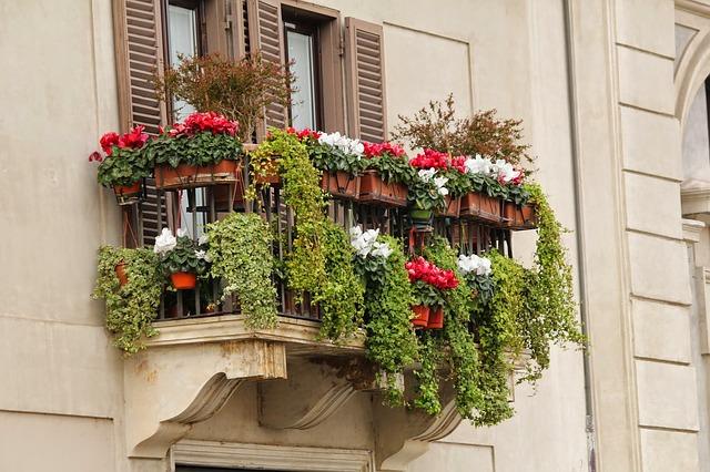 plný balkon květin