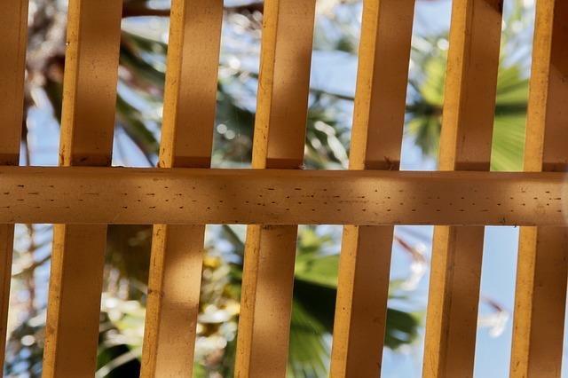 plot z latěk